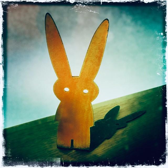 Rabbit Time