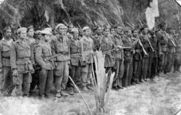 بيان بمناسبة الذكرى 63 لثورة أول نوفمبر 1954 المجيدة