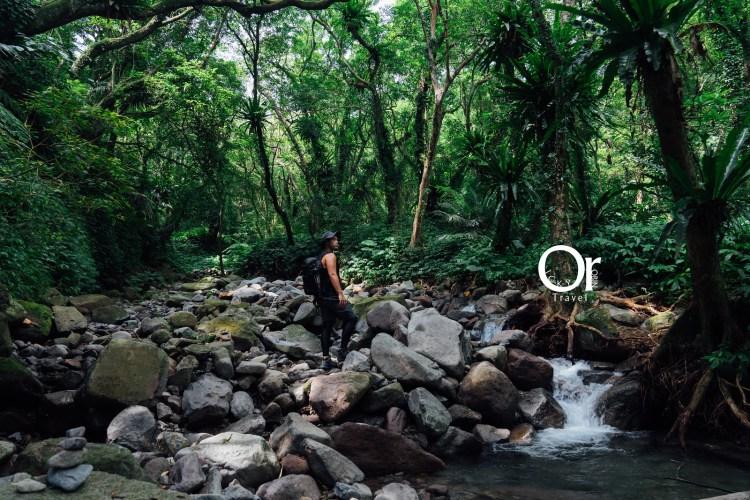 台北陽明山秘境|楓林瀑布、鹿角坑步道,需提前申請才能前往的原始秘境,順著石頭才能找到楓林瀑布