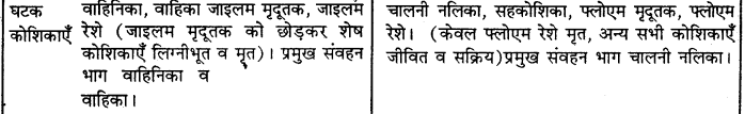 RBSE Solutions for Class 9 Science Chapter 8 Vital activities of living 39