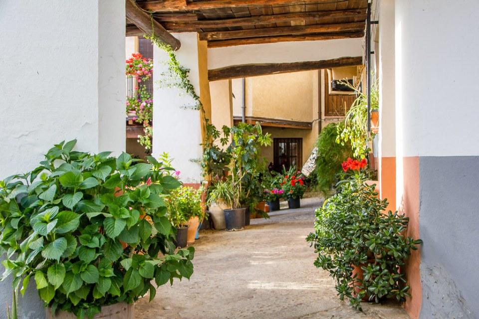 soportal calle logroño Guadalupe Caceres