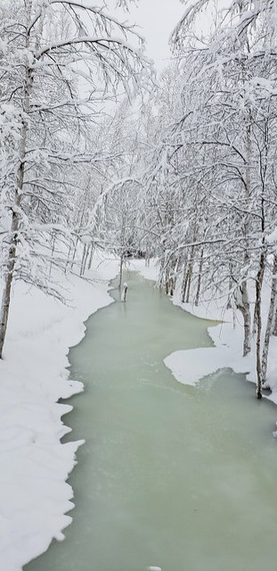 2019-01-29_Fairbanks_019
