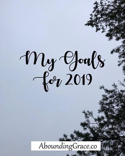 My Goals 2019