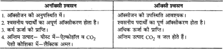 RBSE Solutions for Class 9 Science Chapter 8 Vital activities of living 40