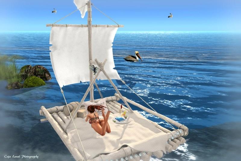 The Sea Dream