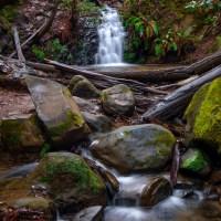 Portola Redwoods State Park: Tip Toe Falls