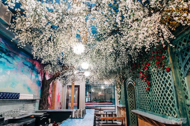 Cherry Blossom Bar 2019-8