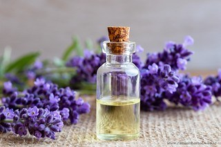 4 Ramuan Herbal Untuk Menyembuhkan Luka Bakar