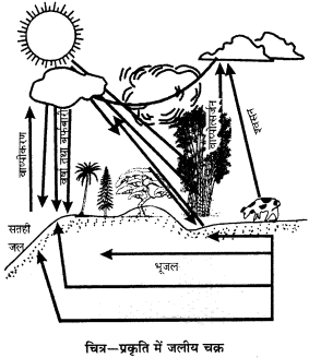 RBSE Solutions for Class 9 Science Chapter 13 pariyavaran 9