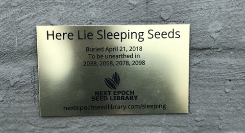 seed-plaque-648x352