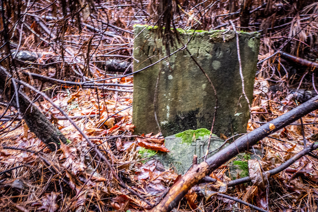 Tall Pines Preserve and South Saluda Church Cemetery-47