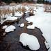 Snowy Fraser Creek