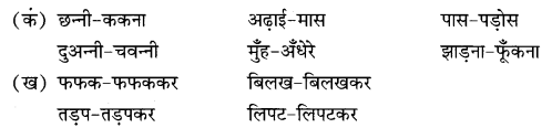 NCERT Solutions for Class 9 Hindi Sparsh Chapter 2 दुःख का अधिकार 5