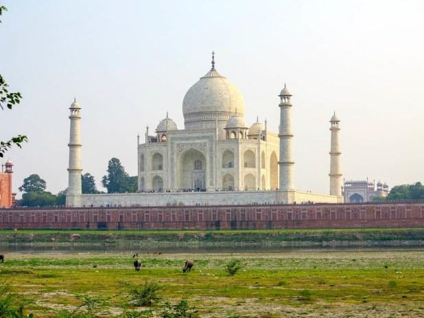 El mejor mirador al Taj Mahal