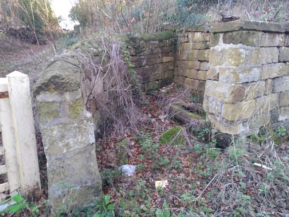 Skelton Well / Water Trough / Cistern