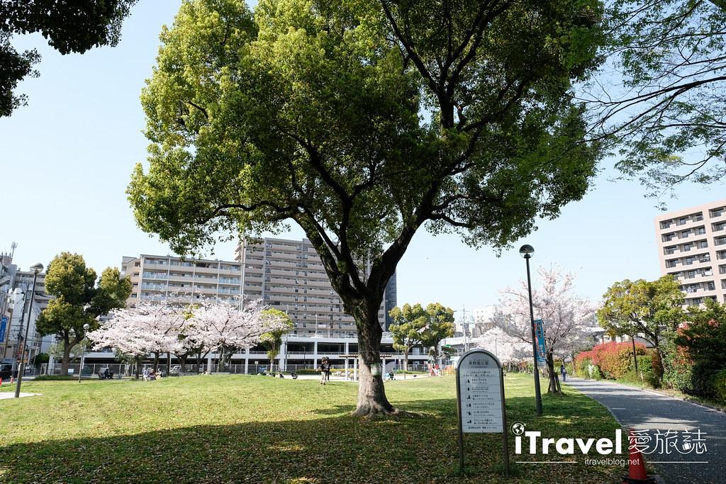 福岡賞櫻景點 美野島公園、東領公園 (8)