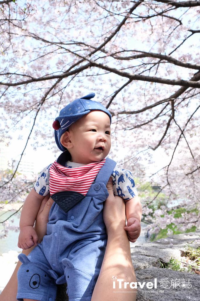 福岡賞櫻景點 美野島南公園 (43)