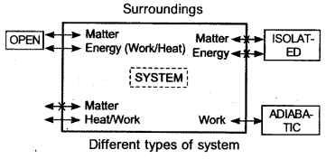 Plus One Chemistry Notes Chapter 6 Thermodynamics