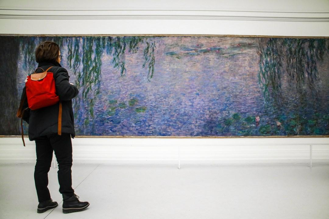 Museo dell'Orangerie, Ninfee di Monet, Parigi