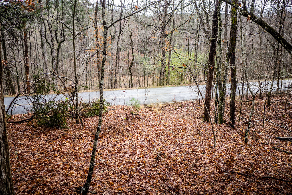 Tall Pines Preserve and South Saluda Church Cemetery-84