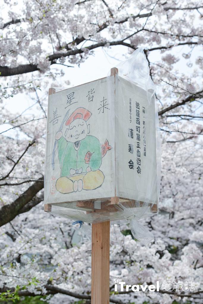 奈良賞櫻景點 奈良佐保川 (4)