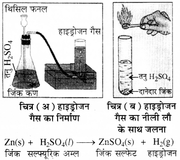 RBSE Solutions for Class 8 Science Chapter 4 Q15