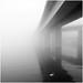 Enskilt i dimman