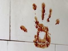 Bloody Handprint from Good-Luck Sacrifice - Sh...