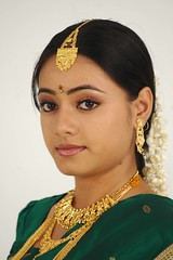 South actress MADHUCHANDAPhotos Set-3-HOT IN TRADITIONAL DRESS (15)