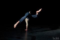 Tetra-danse__2786
