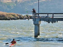 Fishing the Carquinez - Hook-up!