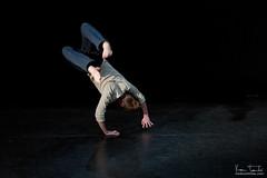 Tetra-danse__2853