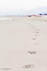 footsteps in the sand (Livorno&Viareggio)