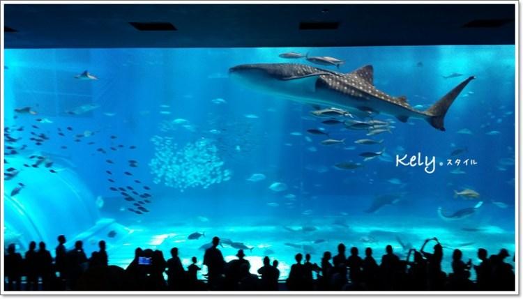 日本》美麗海水族館之mimi好認真看魚之沖繩篇☆Travel in Okinawa