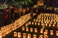 Rally for Recovery Luminaria