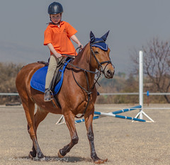 """Crossroads Equestrian Centre • <a style=""""font-size:0.8em;"""" href=""""http://www.flickr.com/photos/67597598@N08/29678750361/"""" target=""""_blank"""">View on Flickr</a>"""