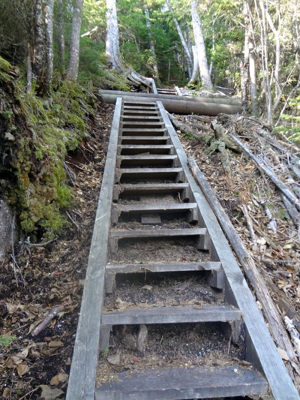 Osseo Trail Ladder on Mt. Flume