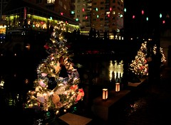 Christmas trees and the Bridge of Stars.