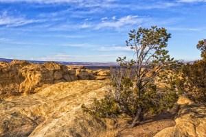 Canyon de Chelly Landscape