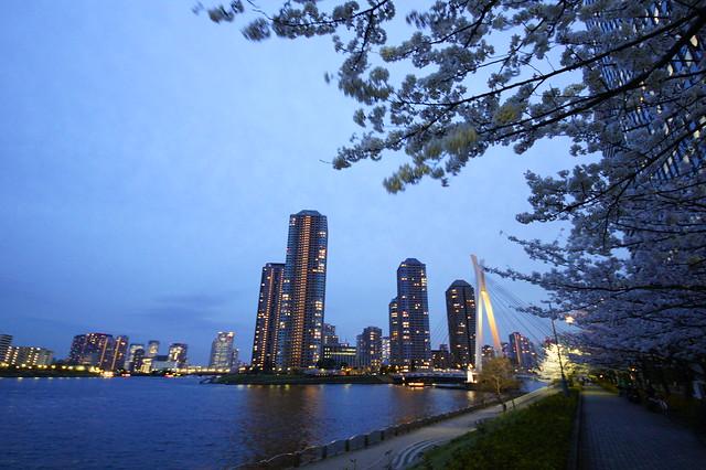 新川公園の隅田川テラス
