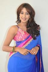 South Actress SANJJANAA PHOTOS SET-1 (26)