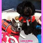 Lottie + Miley