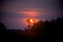 Sunset at the Doo