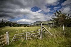 Sur le bord du Loch Tulla