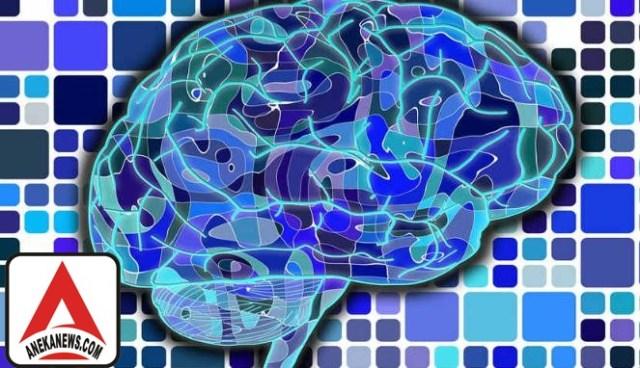 #Tech: Studi: Orang Cerdas Makin 'Haus' Darah