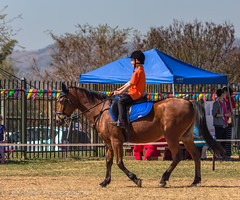 """Crossroads Equestrian Centre • <a style=""""font-size:0.8em;"""" href=""""http://www.flickr.com/photos/67597598@N08/29135657013/"""" target=""""_blank"""">View on Flickr</a>"""