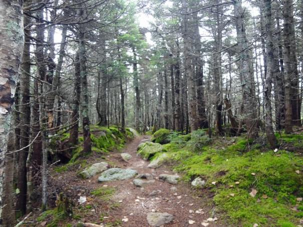 Mt. Tripyramid Trail Hike Between Peaks