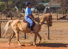 "Crossroads Equestrian Centre • <a style=""font-size:0.8em;"" href=""http://www.flickr.com/photos/67597598@N08/29135928053/"" target=""_blank"">View on Flickr</a>"