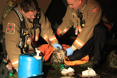 "Toronto Fire Rescues a Dog • <a style=""font-size:0.8em;"" href=""http://www.flickr.com/photos/65051383@N05/8388770354/"" target=""_blank"">View on Flickr</a>"