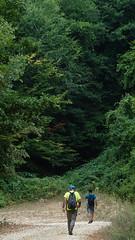 çilingoz milli parkı